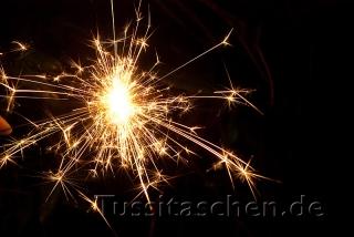 silvester_2009_10